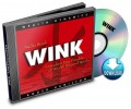 WINK | Audiobook (download)